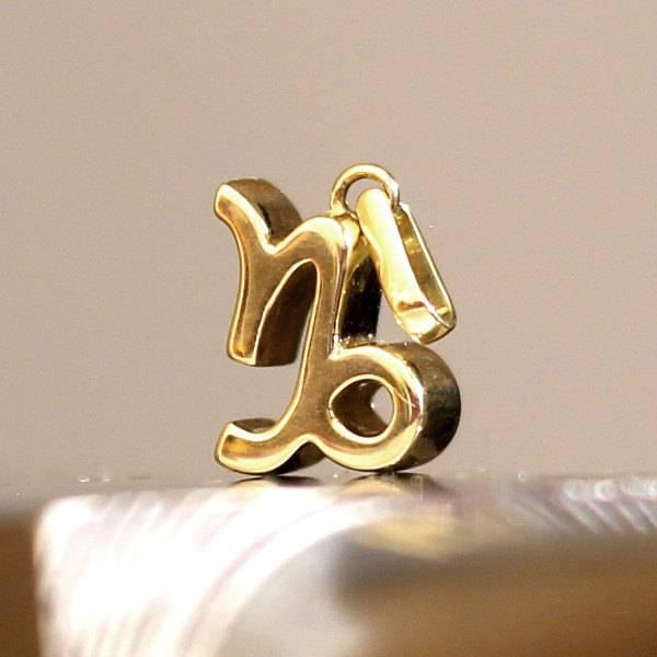 Zodiac capricorn pendant solid Gold Foto